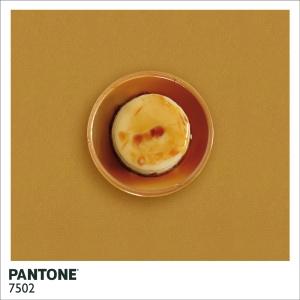 22_7pantone-7