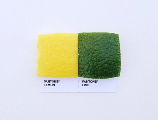 Pantone-Pairings-by-David-Schwen-20-e1362449886299